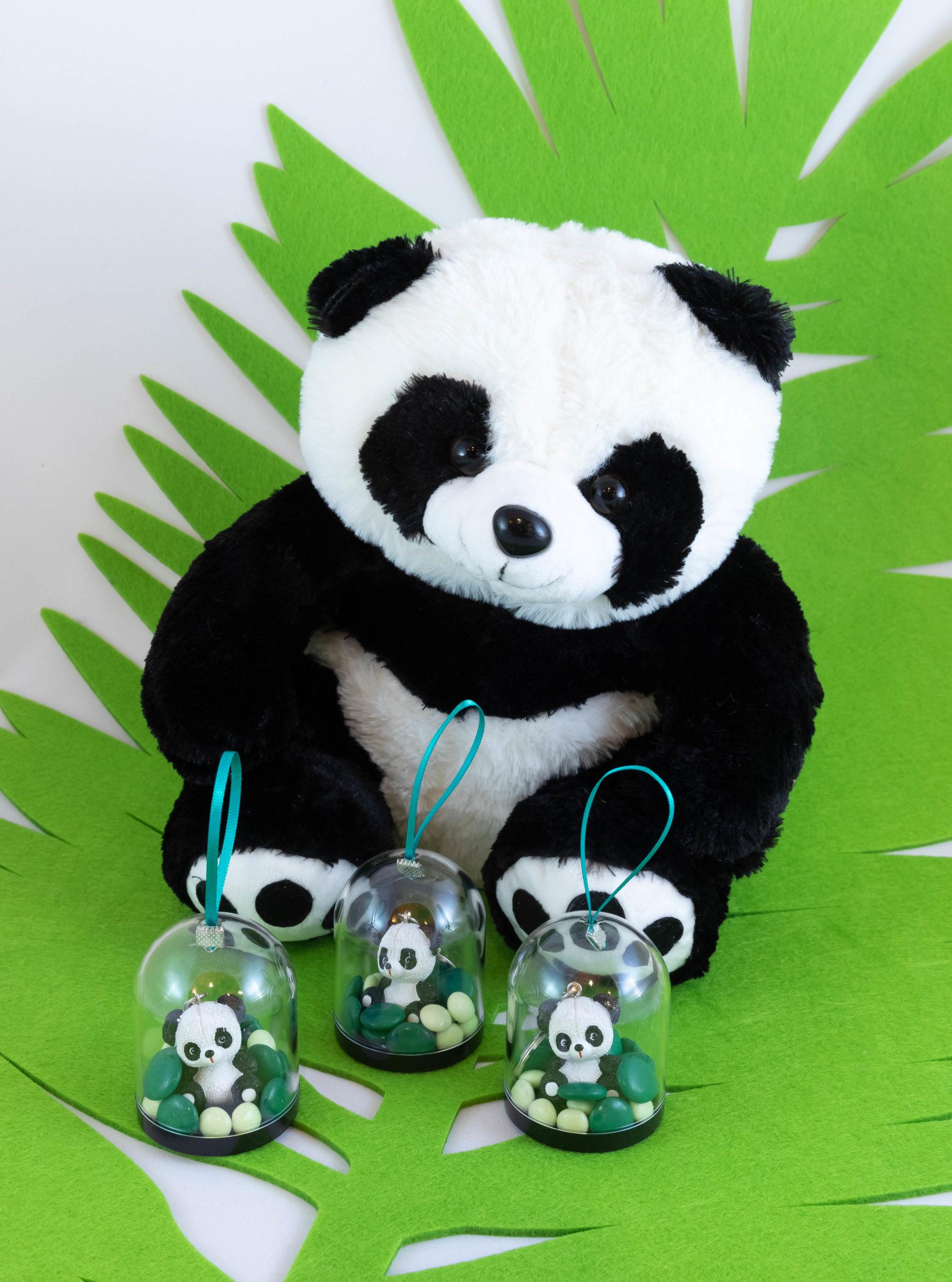Globe - Panda Image