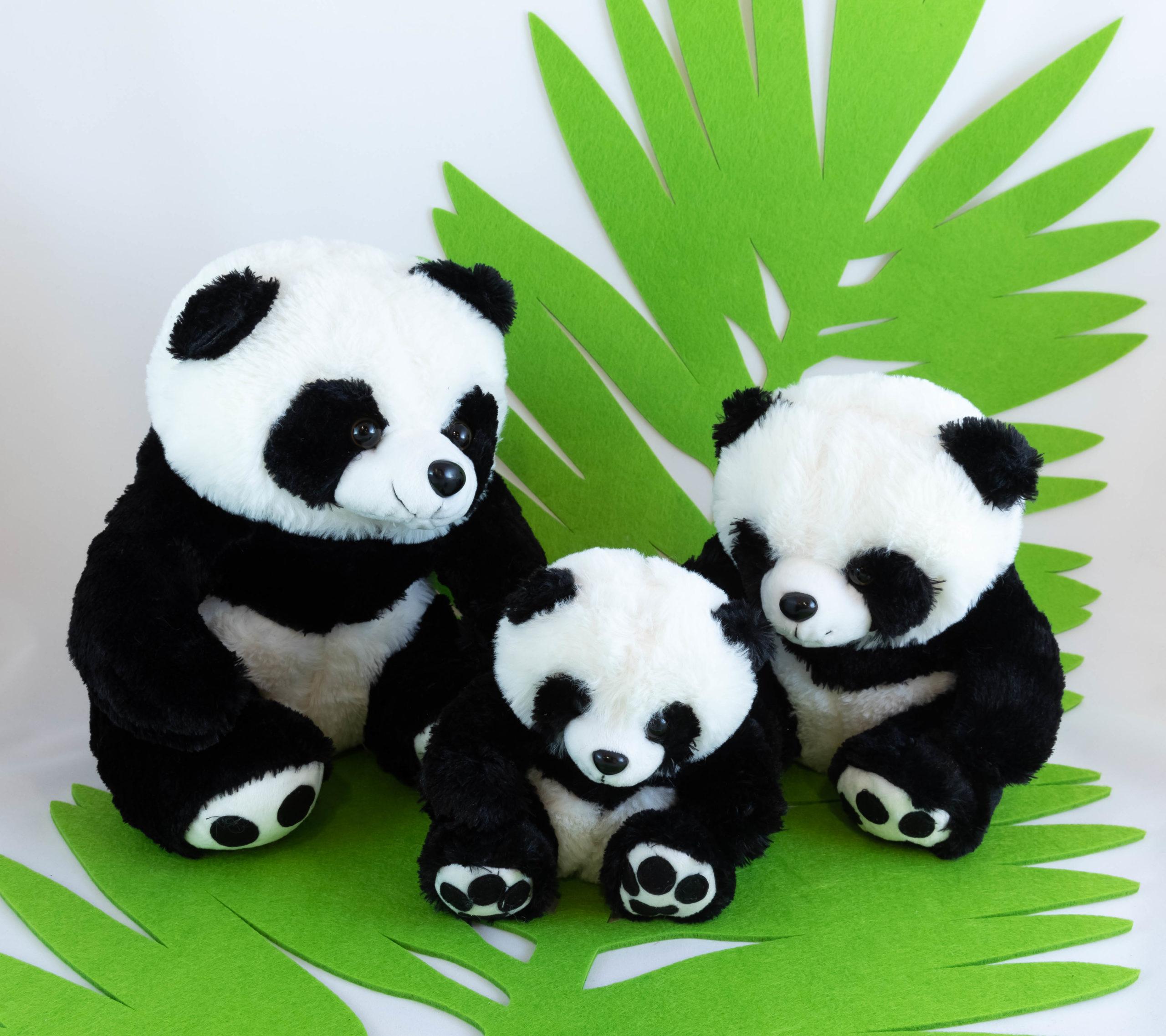 Peluche - Panda Image