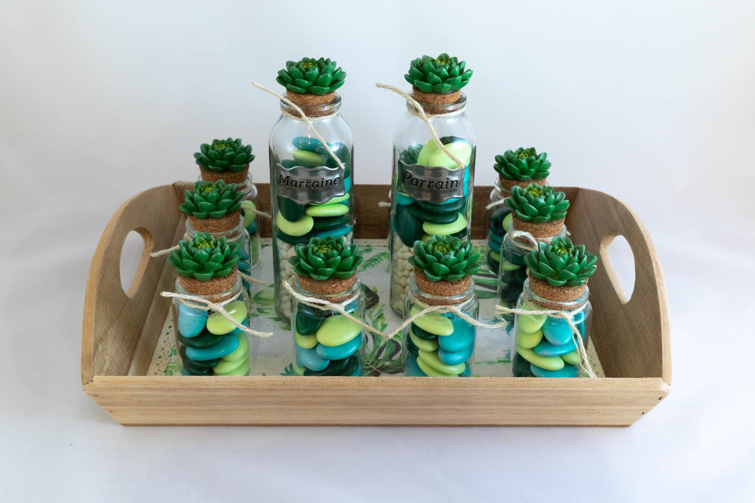 Plateau - Cactus Image